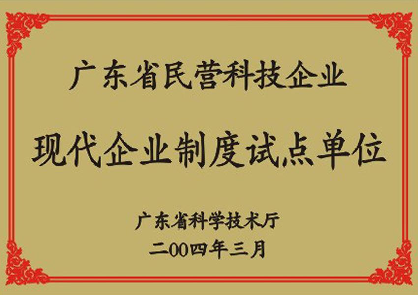 2004年guangdong省民营科技企yexian代企yezhidu试diandanwei证书