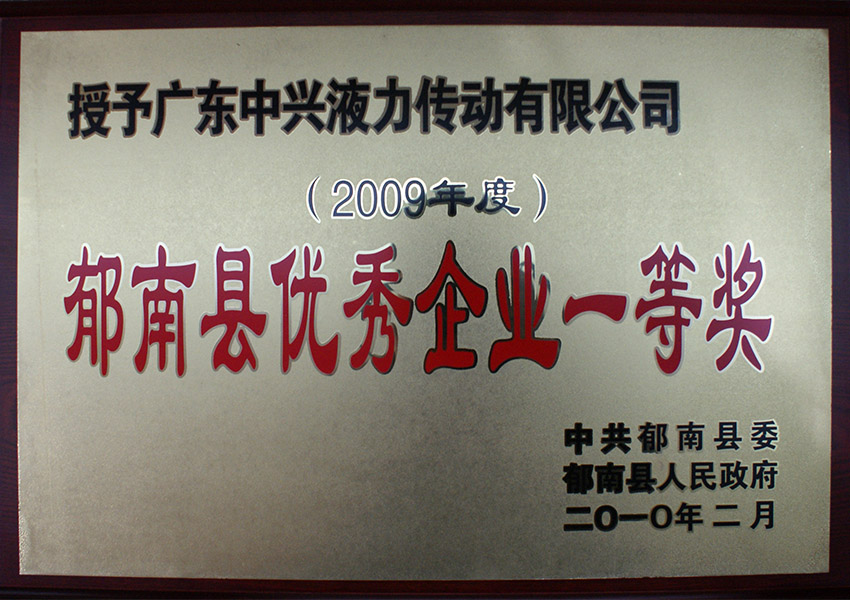 2009年du郁nanxian优秀企yeyi等奖