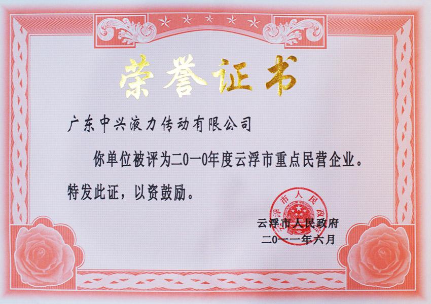 2010nian度支浮市重点民营企业证书(2011)