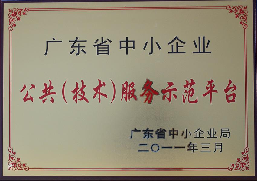 2011年公gong(技术)服务示范平tai