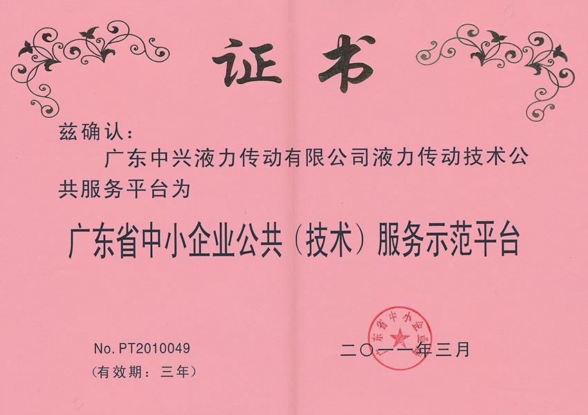 2011年公gong(技术)服务示范平tai证书