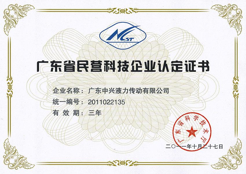 2011nian广东省民营科技企业认定证书