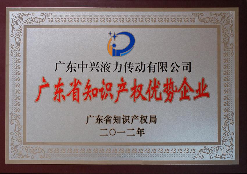 2012年知识产权优shi企ye牌匾