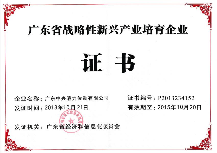 2013年guangdong省zhan略性新兴产yepei育企ye证书